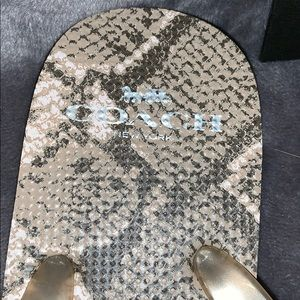 Coach Shoes - 🚫Sold🚫 Coach Snake-print Flip Flops